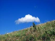 Wolke und Wiese Lizenzfreie Stockfotos