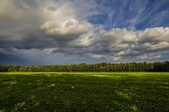 Wolken über Ackerland und Wald im Sommer Stockbilder