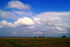 Wolken über dem Feld Stockfotografie