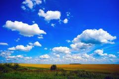 Wolken über dem Feld RAUM FÜR BEDECKUNGSschlagzeile UND TEXT Lizenzfreies Stockbild