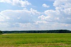 Wolken über dem Feld und dem Waldhintergrund, Natur Stockfotografie
