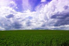 Wolken über einem Feld an der Landschaft Stockfotografie