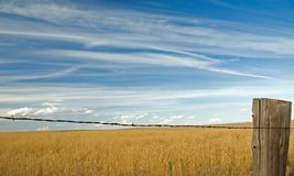 Wolken über Feld 5 Stockfotografie