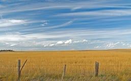 Wolken über Feld 7 Lizenzfreie Stockfotografie