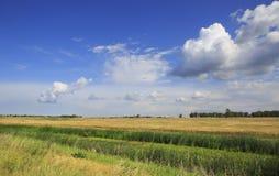 Wolken über Feldern Stockfoto