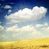 Wolken über gelben Feldern (grunge Bild) Stockfotos