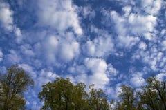 Wolken. Royalty-vrije Stock Afbeelding