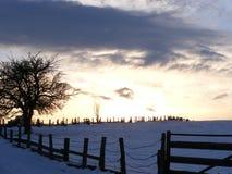 Wolken in de winter - eenzaamheidboom Stock Foto's