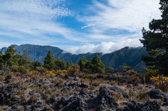 Wolken die over Cumbre op La Palma, Spanje komen Stock Fotografie