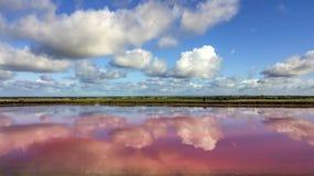 Wolken die in roze meer 04 nadenken stock fotografie