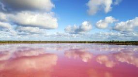 Wolken die in roze meer 05 nadenken stock fotografie