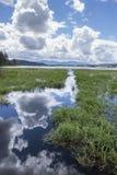 Wolken, die weg vom Wasser sich reflektieren Stockfotos