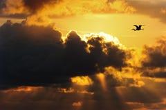 Wolken Donkere Hemel Royalty-vrije Stock Foto's