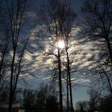 Wolken en bomen Stock Afbeelding