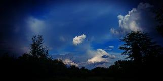 Wolken en donkere silhouetten van bomen Mening aan het kasteel van de werelderfenis van Cesky Krumlov Royalty-vrije Stock Afbeeldingen