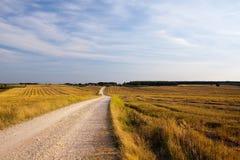 Wolken en gras Royalty-vrije Stock Afbeelding