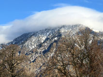 Wolken-Krone Lizenzfreie Stockbilder