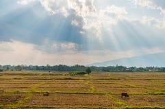 Wolken met zonnestraal bij de mening van het land. stock foto