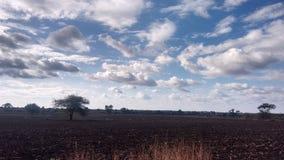 Wolken oder Zuckerwatte?? 😠‹ lizenzfreie stockfotografie