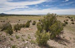 Wolken op de woestijn royalty-vrije stock afbeelding