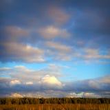 Wolken over het bos Royalty-vrije Stock Foto