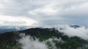 Wolken over regenwoudwildernis Satellietbeeld van regenwoud stock video