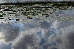Wolken-Reflexion auf See Lizenzfreies Stockbild