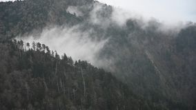 Wolken in Smokies mov stock video