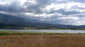 Wolken-Sonnenstrahl-Sonnenblumen-Felder Kestel Bursa die T?rkei lizenzfreie stockfotos