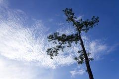 Wolken u. der Himmel Lizenzfreie Stockbilder