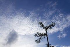 Wolken u. der Himmel Lizenzfreies Stockbild