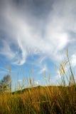 Wolken und Felder 2 stockfoto