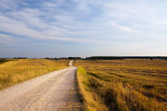Wolken und Gras Lizenzfreies Stockbild