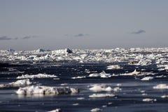 Wolken van de de gletsjers de oceaanhemel van Groenland Stock Fotografie