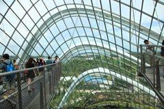 Wolken-Wald, Gärten durch den Schacht Lizenzfreies Stockfoto