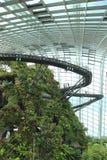 Wolken-Wald, Gärten durch den Schacht Lizenzfreies Stockbild