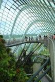 Wolken-Wald, Gärten durch den Schacht Lizenzfreie Stockbilder
