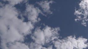 Wolken-Zeitspanne des Kumulus weiße stock footage