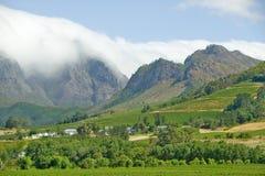 Wolkenabdeckungsberge in der Stellenbosch-Weinregion, außerhalb Cape Towns, Südafrika Lizenzfreie Stockfotos