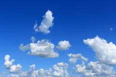 Wolkenaussehung wie Tanztier Lizenzfreies Stockfoto