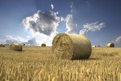 Wolkenblinken über Feld Lizenzfreies Stockbild