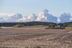 Wolkenfeld Stockfotos