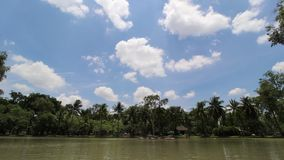 Wolkenkrabber in de tuin van Bangkok stock footage