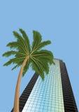 Wolkenkrabber en palm Stock Fotografie