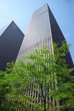 Wolkenkrabber met een boom stock foto