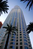 Wolkenkrabber met Palmen Royalty-vrije Stock Afbeeldingen