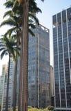 Wolkenkrabbers in Sao Paulo Royalty-vrije Stock Foto's