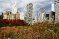 Wolkenkrabbers van Chicago in de herfst Royalty-vrije Stock Foto