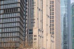 Wolkenkrabbers van het Lujiazui de financiële district in Shanghai Royalty-vrije Stock Afbeelding