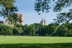 Wolkenkratzer bahind Central Park lizenzfreie stockfotografie
